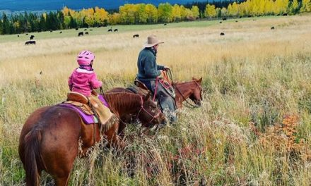 Cattle ranchers look towards sustainability for the next generation