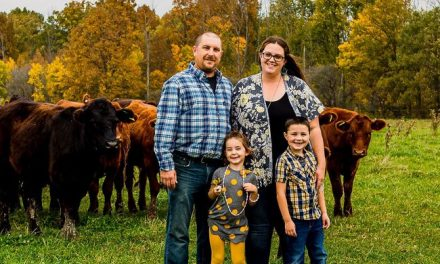 Consumers turning to local producers for dependability