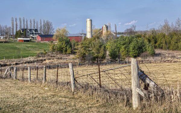 Rural investment efforts get a huge global ally