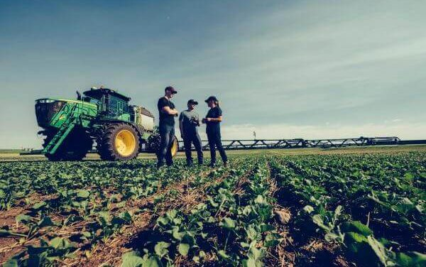 Qinclorac MRL approval marks collaborative win for growers and industry
