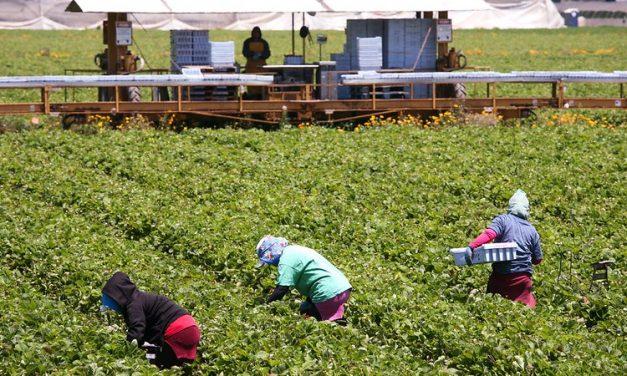Farm journalism training program underway in Latin America