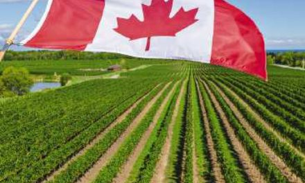 "When food and farming gives you that ""Oh Canada"" feeling"