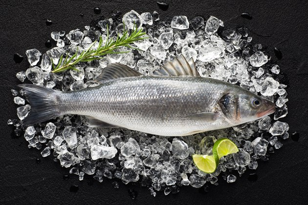Report calls for more responsible labeling to avoid 'fish fraud'