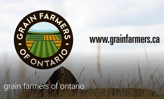 Cooperation is key for farmers and new government