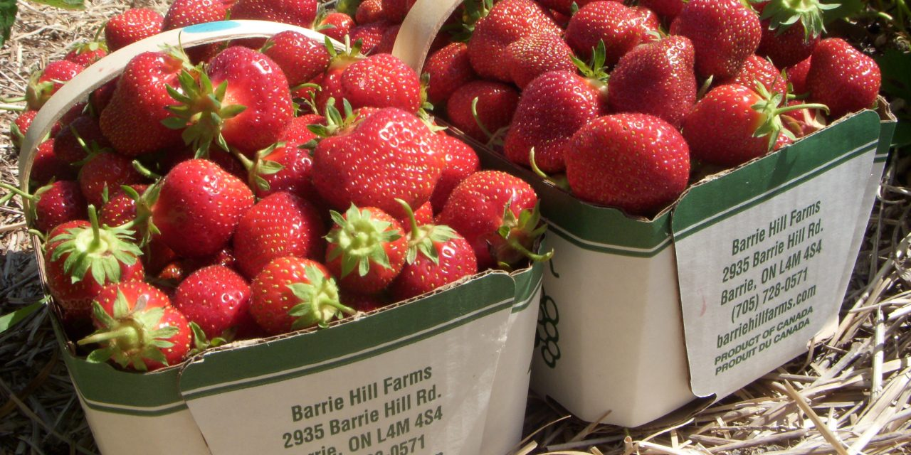 Farmers need to give consumers what they want, and that's local