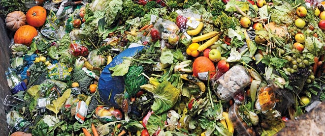 Food waste is one problem that Canadian consumers and farmers face. Photo credit www.mcleans.com