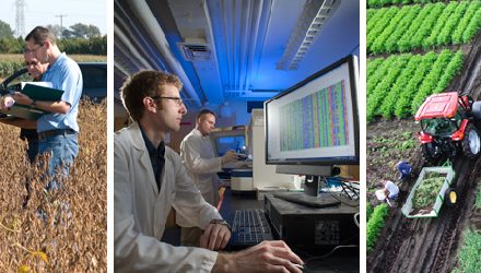 Record farm profitability masks drop in research