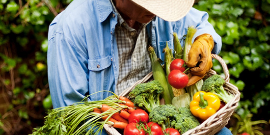 Farm worker safety is focus of new support